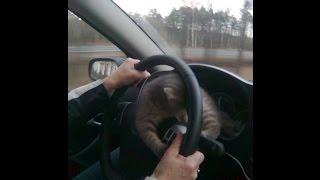Уроки вождения новосибирск