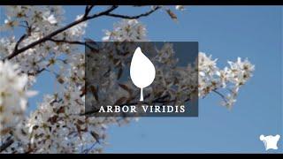 ARBOR VIRIDIS - Hugo GUILLEMIN 2020