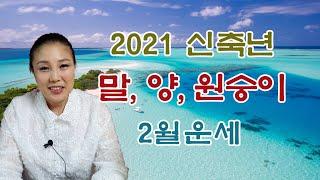 [곳간테레비/태을신다]2021신축년2월띠별운세/말띠/양…