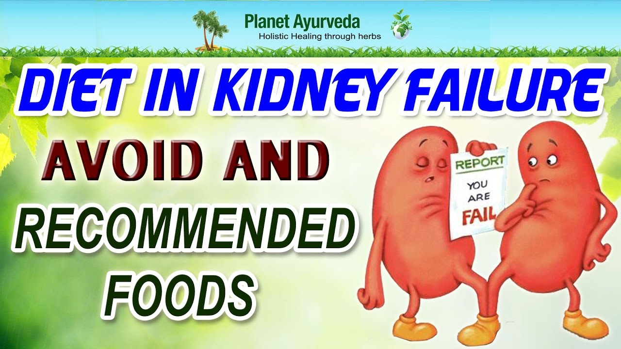 What Foods Should Dogs With Kidney Failure