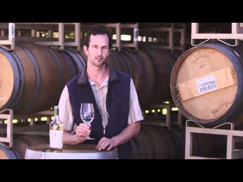 Tasting - Provenance Vineyards Napa Valley Sauvignon Blanc