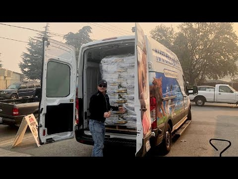 Saving pets from the California wildfires