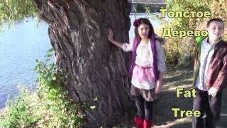 Видео уроки английского языка  Цвета Осени ~ Autumn Colors