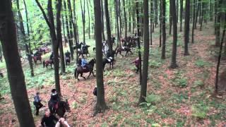 """KONIE HUBERTUS 2012 """"Konie, wolność i wiatr"""" Tuchów-Karwodrza (skrót+galopy)"""