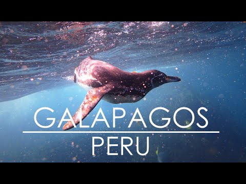 3 weeks in Galapagos and Peru (HD)