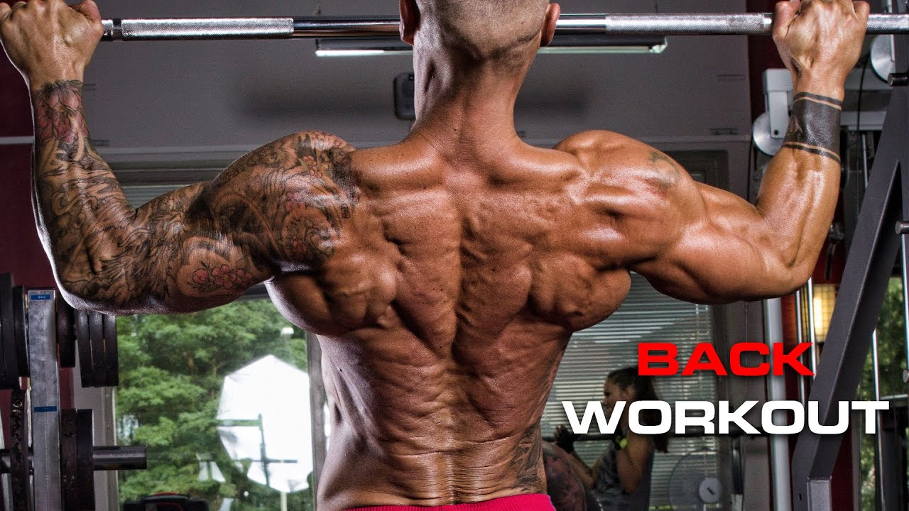 How to build a wide muscular back - YouTube
