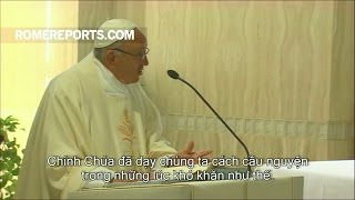 Đức Giáo Hoàng: Chúa dạy chúng ta cầu nguyện khi gặp phiền muộn trong lòng
