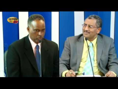 Tempo Afric TV - Eritrea Arts & Culture Conversation with Hailemichael Habteslassie ( Lingo )