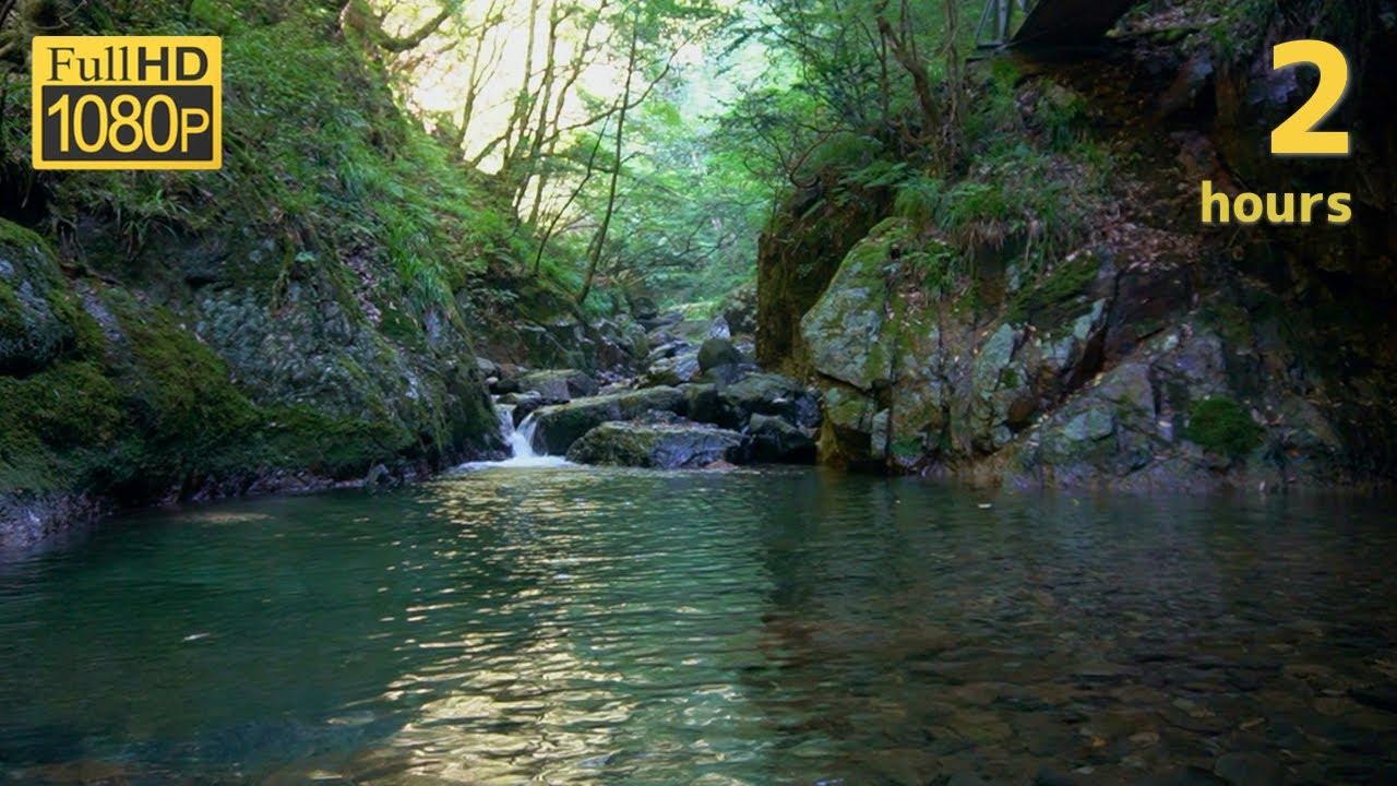 【渓流BGM】山奥の水のせせらぎ音と映像でくつろぐ2時間23分