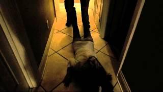 Frankenstein: A Short Film