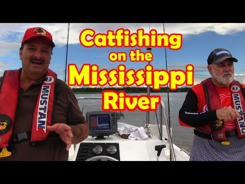 Catfishing Rig For Walking Baits On The Mississippi River