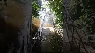 Мост через реку Утроя затоплен.