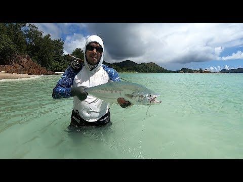SEYCHELLES PRASLIN FISHING JUNE 2019