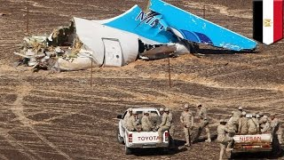 Russian airliner crash in Egypt not caused by missile or technical fault say officials - TomoNews