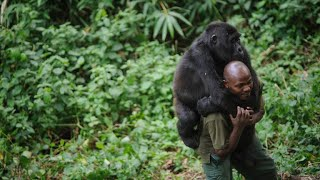 Violence in Congo forces Africa's oldest national park to close until 2019