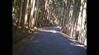 和歌山県道224号(通行止めのため一部)