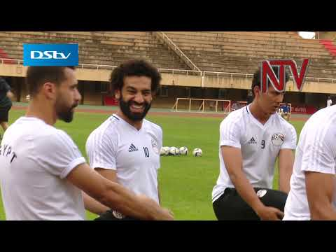 Pharaohs train: Arsenal midfielder leads cast of professional stars