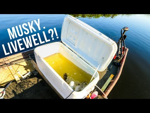 HOMEMADE LIVEWELL    EXTREMELY Unexpected And HECTIC Moment Fishing!! (SO LUCKY)