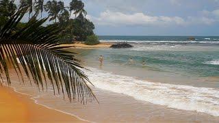 Unawatuna Beach, Galle, Sri Lanka. - Sri Lanka / Hikkaduwa /Galle / Unawatuna