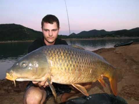 Kroatien Carp Fishing 2011