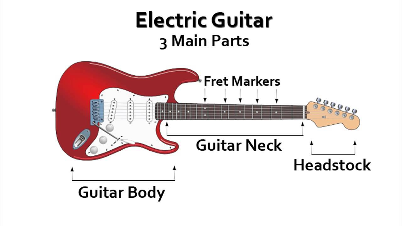 Electric Guitar Anatomy - YouTube