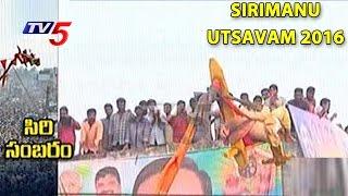 Sirimanu Utsavam 2016   Pydithalli Ammavari Jathara   Vizianagaram   Telugu News   TV5 News