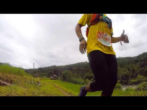 ColourCoil TMBT Ultra-Trail Marathon 2016 (30km)