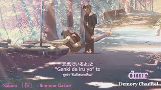 Gambar cover [ซับไทย] เพลงญี่ปุ่นเพราะๆ Sakura 【桜】 – Ikimono Gakari OST 2018 [HD]