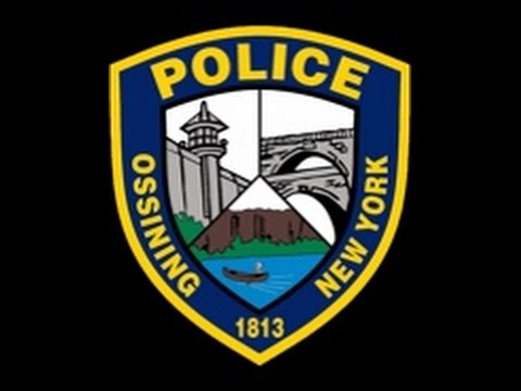 Three Ossining police officers captured a snake from a local resident's kitchen Thursday, News 12 Westchester reported.