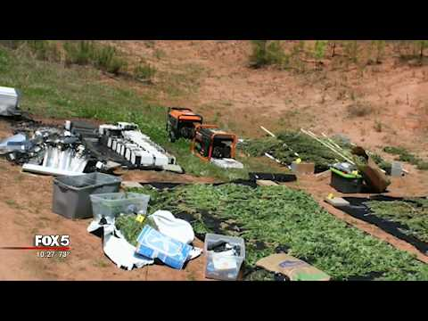 Marijuana grow house discovered in Avondale Estates home