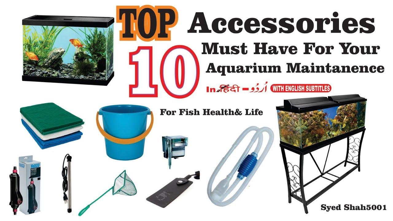 Aquarium Accessories Must Have For Your