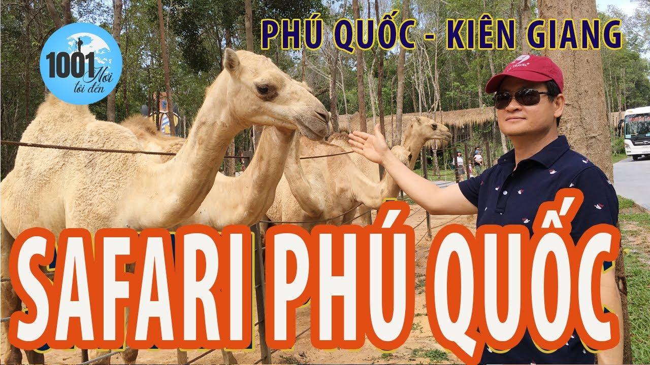 Vinpearl Safari Phú Quốc | Công viên động vật hoang dã lớn nhất Việt Nam