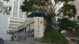 Publication Date: 2018-11-12 | Video Title: #4鶴山小學,華富邨