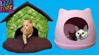 Домики для КОТИКОВ Крутой Подарок КОТОДОМ Лиза и котики Surprise House for CATS