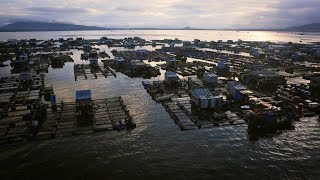 These Chinese Fishing Communities Raise Their Own Fish