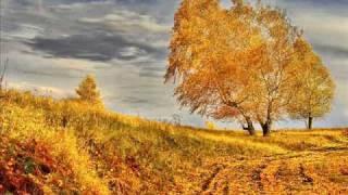 Phil Collins - Another day in te paradise - Otro día en el paraiso