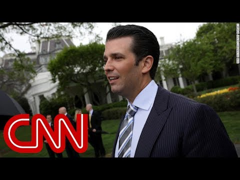 Email to Trump Jr. offered WikiLeaks documents