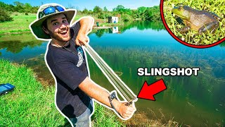 SLINGSHOT Bullfrog Hunting CHALLENGE in My BACKYARD!!! (CATCH CLEAN COOK)