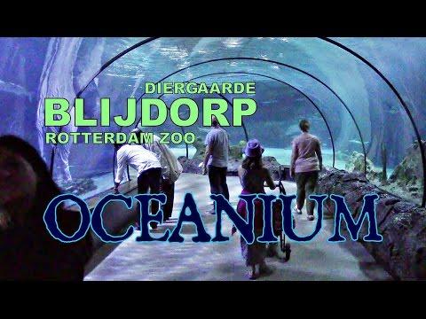 Oceanium, Diergaarde Blijdorp Rotterdam