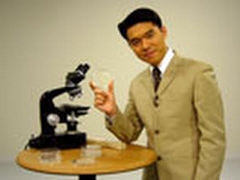 バクテリアを模した自走粒子の直接数値シミュレーション   by 岡村惇也