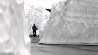 雪の回廊   Norikura Alpine Snow Wall