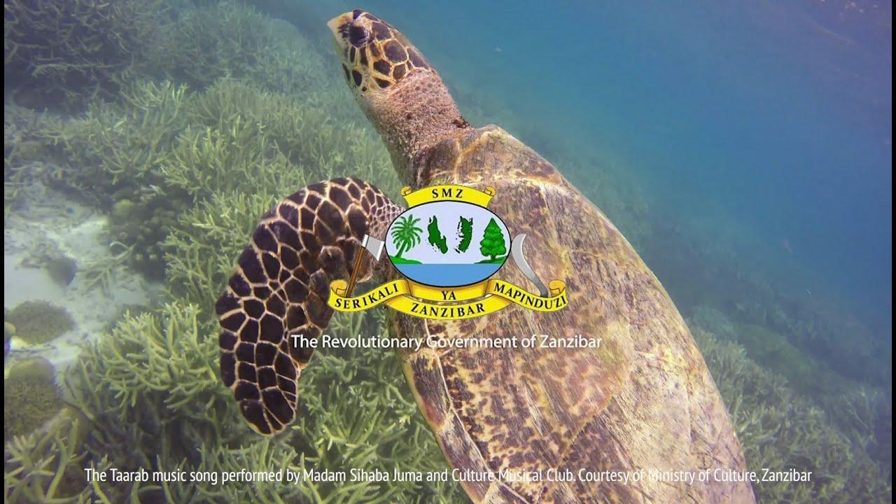 Zanzibar - Chumbe Island:Coral Park Chumbe Island featured in