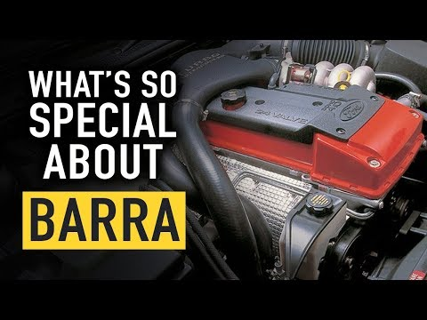 What's So Special About Barra? - Technically Speaking