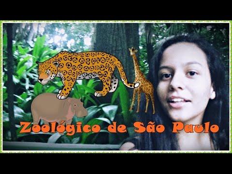 Vlog- Zoológico de São Paulo