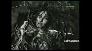HAWA HAI SARD SARD -LATA -RAJINDER KRISHAN -C RAMCHANDRA ( SHATRANJ 1956)