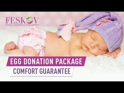 egg-donation-comfort-guarantee-—-program-with-a-donor