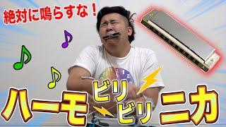 絶対にならしてはいけないビリビリハーモニカがめちゃめちゃ面白かった!Attack on Biribiri harmonica