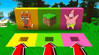 Minecraft PE : DO NOT CHOOSE THE WRONG Hole! (Foxes, Minecraft & Patrick)