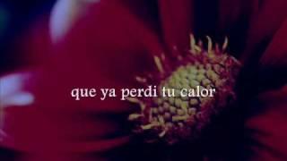 Gipsy Kings - Mi Vida (lyrics)
