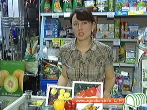Дыня – купить семена Дыня в Москве курьером с доставкой по